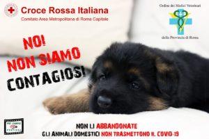 Coronavirus: appello Cri, non abbandonate gli animali